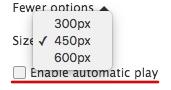 出力するサイズを300px, 450px, 600pxから選ぶ